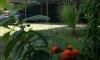 Eko naselje San, Ulcinj, Apartmani