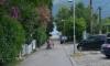 Apartmani CECA, Đenovići, Apartmani